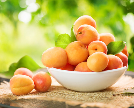 and organic: Apricot. Ripe organic apricots over green nature blurred background Stock Photo