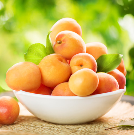 green nature: Apricot. Ripe organic apricots over green nature blurred background Stock Photo