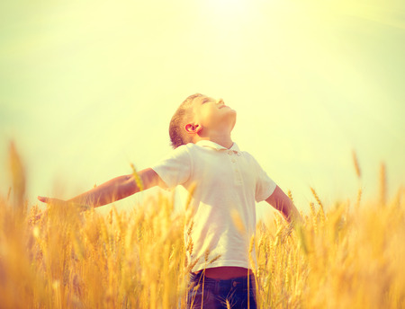 Little boy on a wheat field in the sunlight enjoying nature Stock Photo