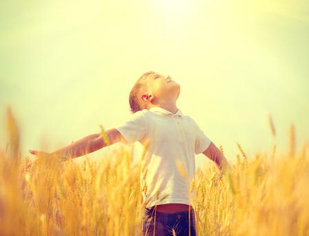 cebada: Niño pequeño en un campo de trigo en la luz del sol disfrutando de la naturaleza Foto de archivo