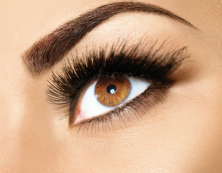 line up: Brown eye makeup. Perfect beauty eyebrows
