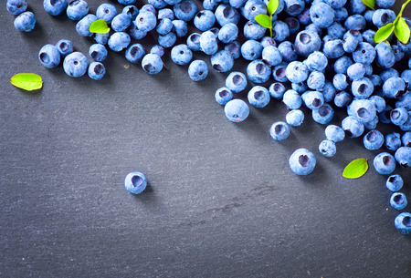Blueberry border design. Blueberries background Zdjęcie Seryjne
