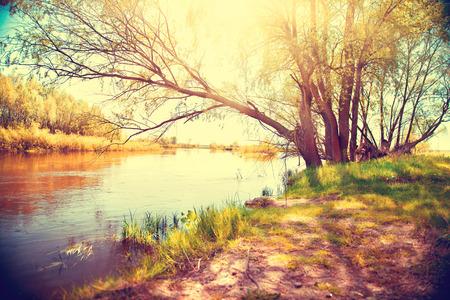 sol: Paisagem do outono com um rio. Cena bonita Imagens