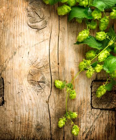 木製のひびの入ったテーブル背景のボーダーに小枝をホップします。ビンテージ トーン。ビール生産の成分。ビール醸造所。美しい新鮮な摘み全体