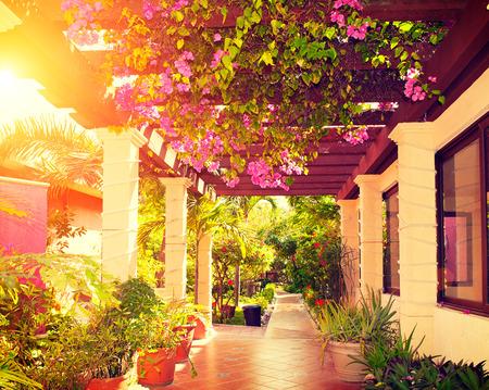 schoonheid: Mooie vintage aangelegde terras van een huis met bloemen Stockfoto