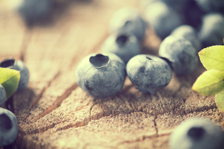 Bilberries vintage toned. Fresh blueberries close up over cracked wood