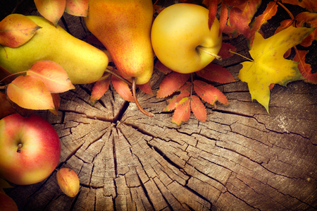 pera: Acción de gracias del fondo del marco. Hojas coloridas, manzanas y peras