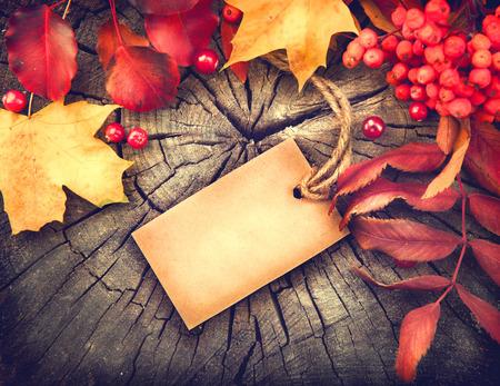 Podzimní pozadí s prázdnou přání a barevné listí na dřevo