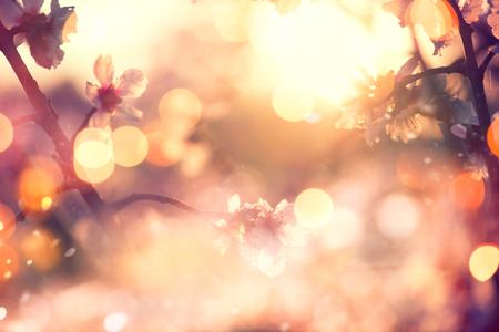 満開の木と太陽の美しい自然場面フレアします。