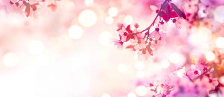 핑크 피 나무와 봄 꽃 테두리