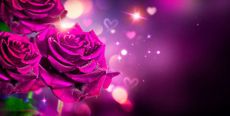purple rose: Roses and hearts background. Valentine or wedding card design