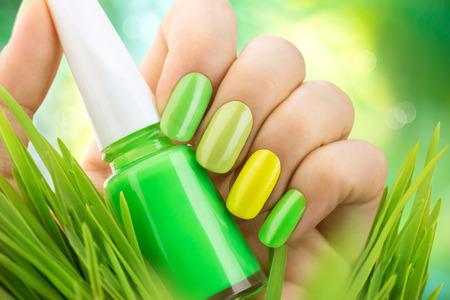 Frühlings-Maniküre. Frische Natur modische grüne Nägel Standard-Bild
