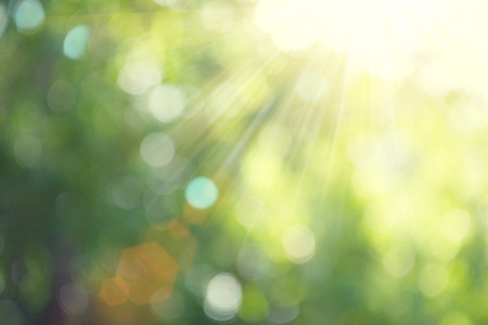 defocus: Beautiful nature blurred background. Green bokeh Stock Photo