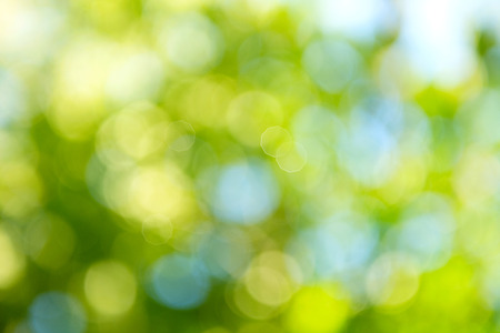 Beautiful nature blurred background. Green bokeh Reklamní fotografie