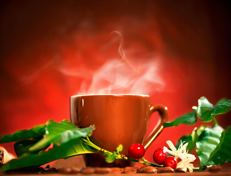 green bean: Coffee. Cup of steaming coffee with the real coffee berries and flowers