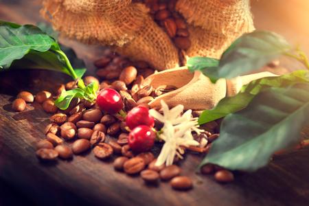 Los granos de café, flores y hojas de café en la mesa de madera Foto de archivo