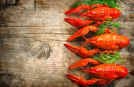 Crawfish. Red boiled crayfish on a wooden table in rustic style, close-up