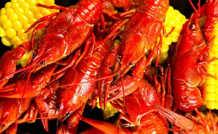 garra: Cangrejo de río. estilo criollo ebullición de los cangrejos que sirve con maíz y papas
