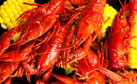 creole: Crayfish. Creole style crawfish boil serving with corn and potato