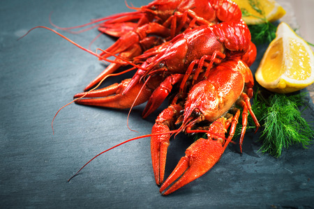 Red boiled crayfish with lemon and herbs on stone slate. Crawfish closeup Stock Photo