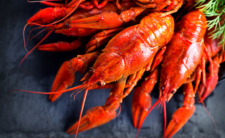 Red boiled crayfish or crawfish with lemon and herbs
