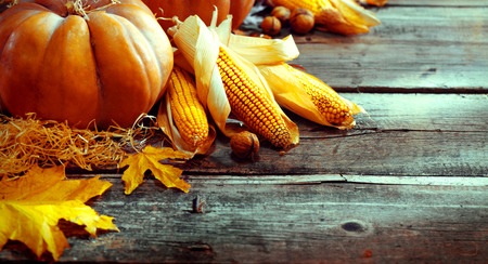 traditional: Thanksgiving Day. Autumn Thanksgiving pumpkins over wooden background