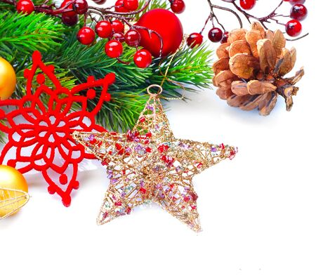 berry: Christmas and New Year decoration isolated on white background. Border art design