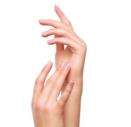 mãos: Mãos bonitas da mulher. Termas e conceito manicure. Mãos fêmeas com manicure francês Imagens