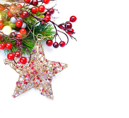 berry: Christmas and New Year decoration isolated on white background