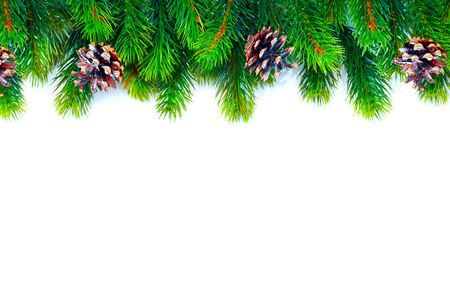 Christmas tree with cones border background isolated on white