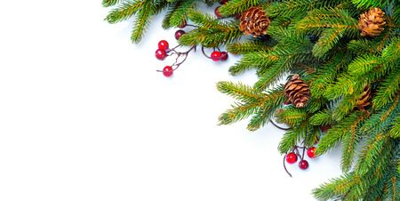 Christmas border. Branches of fir tree decorated with holly berry and cones