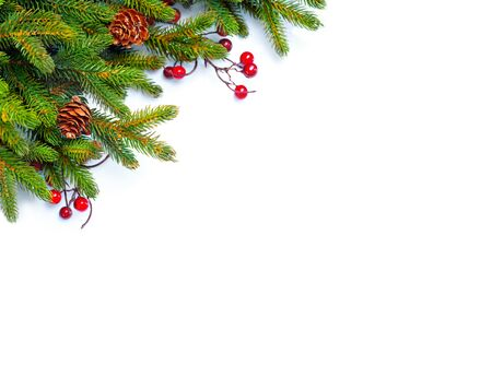 christmas decorations: Christmas tree with cones border isolated on a white background