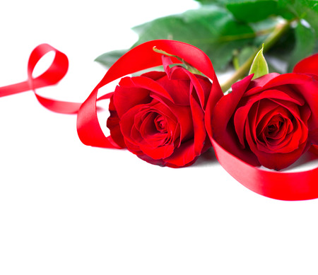 saint valentine   s day: Valentines Day. Red roses isolated on white background Stock Photo