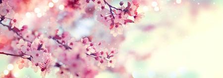 Spring grens of kunst achtergrond met roze bloesem. Prachtige natuur scène met bloeiende boom en zon flare