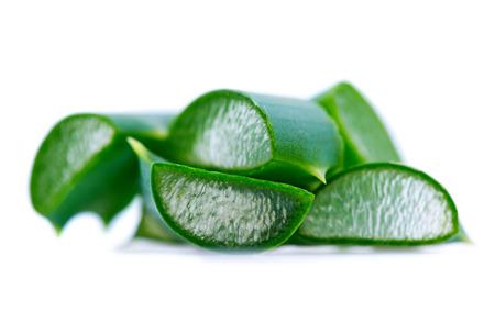 Aloe Vera closeup Isolated on white background. Aloevera natural organic renewal cosmetics, alternative medicine. Skin care concept