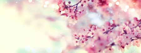 ピンクの花と春の境界線や背景美術満開の木と太陽の美しい自然場面フレアします。