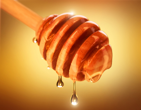 Honey dripping from honey dipper isolated on yellow. Thick honey dipping from the wooden honey spoon