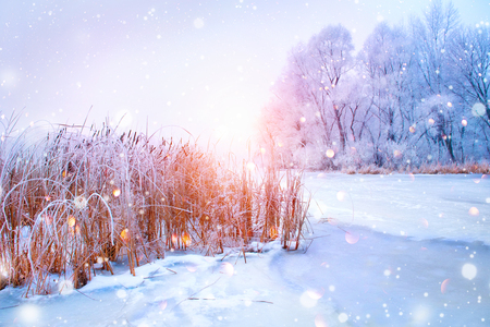 Beautiful winter landscape scene with snow covered trees and ice river