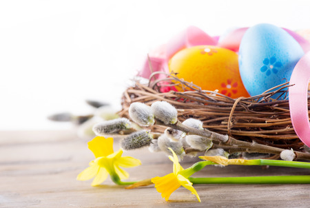 greeting season: Easter background. Beautiful colorful eggs in the nest with spring flowers