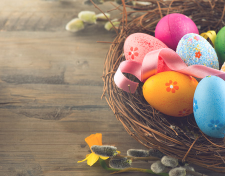 decoration: Easter background. Beautiful colorful eggs in nest with spring flowers over wooden brown background border design