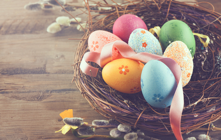 traditional: Easter background. Beautiful colorful eggs in nest with spring flowers over wooden brown background border design