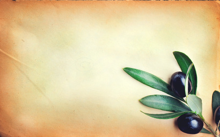 book: Olive over paper background. Fresh and healthy organic olives border design