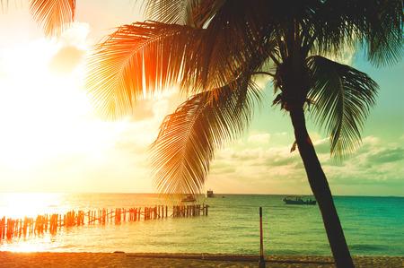 야자수와 아름 다운 하늘 일몰 해변입니다. 관광, 여행, 휴가 개념 스톡 콘텐츠