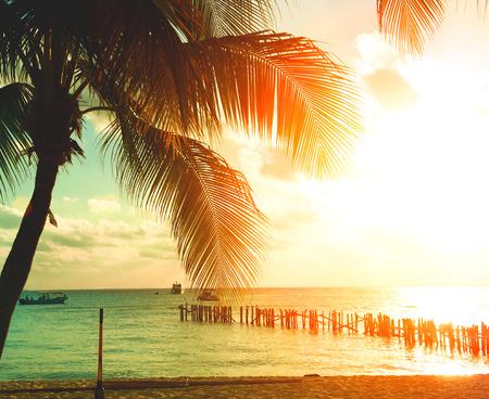 iluminado a contraluz: Playa de la puesta del sol con las palmeras y el cielo hermoso. Turismo, viajes, concepto de vacaciones