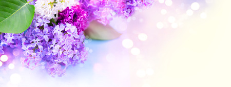 Lilac flowers bunch over blurred background Imagens