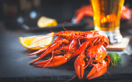 river: Boiled red crayfish or crawfish with a beer and herbs closeup