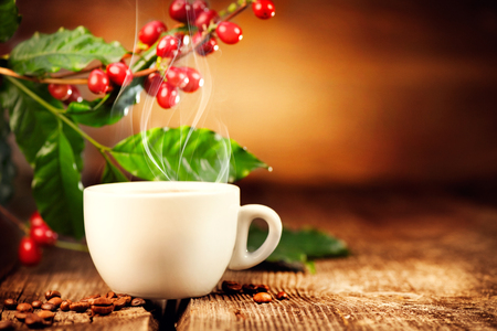 Koffie. Kopje hete koffie close-up en echte koffiebonen. 4K UHD video 3840X2160 Stockfoto