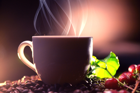 decoration: Coffee. Cup of hot coffee closeup and real coffee beans