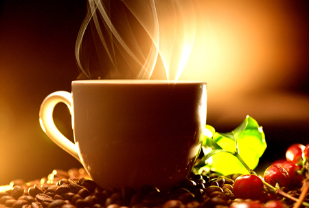 real: Coffee. Cup of steaming coffee with the real coffee ripe berries, flowers and leaves on a branch of coffee tree over wooden background, silhouette
