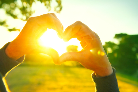 hand: Person making heart with hands over nature sunset background. Silhouette hands in heart shape with sun inside Stock Photo